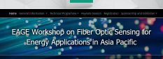 Silixa presenting at the EAGE Workshop on Fiber Optic Sensing for Energy Applications on 9-11 November 2020