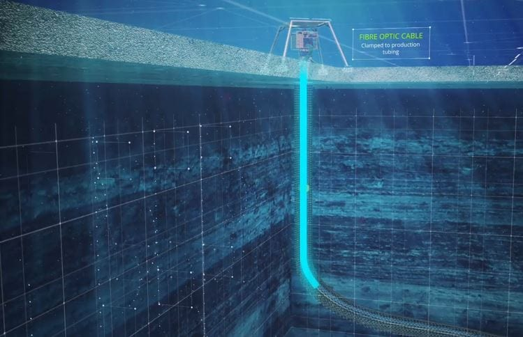 Carina Subsea 4D