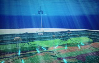subsea reservoir monitoring